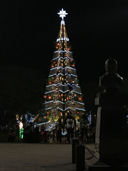 christmas-tree-baguio